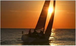 sail shot